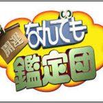 三好長慶の宝・曜変天目茶碗の最高額はいくら?|何でもお宝鑑定団