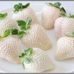 白イチゴの画像!値段&産地どこ?味・価格の違い何?ジョブチューン