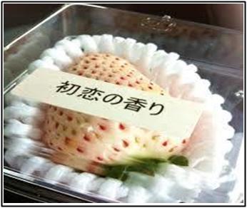 白イチゴ、ジョブチューン