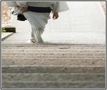 日馬富士、横綱、力士、相撲界